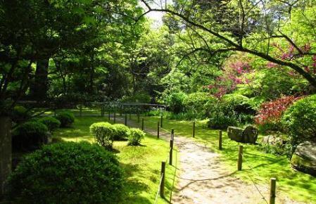 春の庭園20130415134728596s