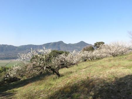 牛尾天山に登る 024