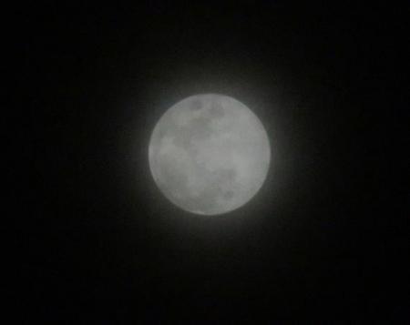 月の出 003
