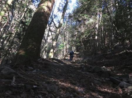 多良岳に登る 066