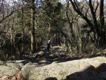 多良岳に登る 118