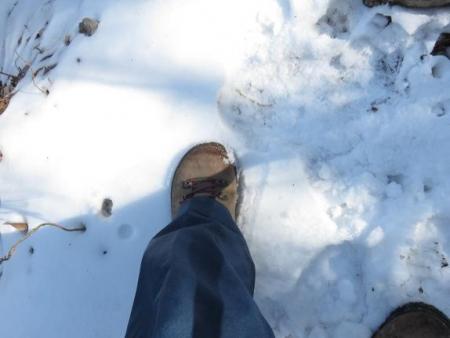 多良岳に登る 148