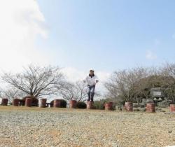 清水の桜 032