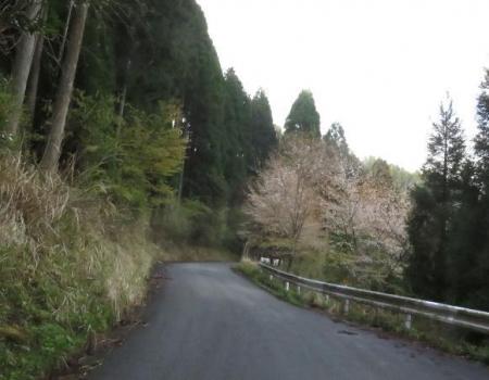 カラ迫山開き 030