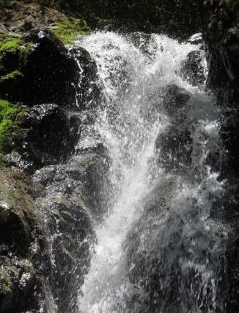 星野不動の滝 049