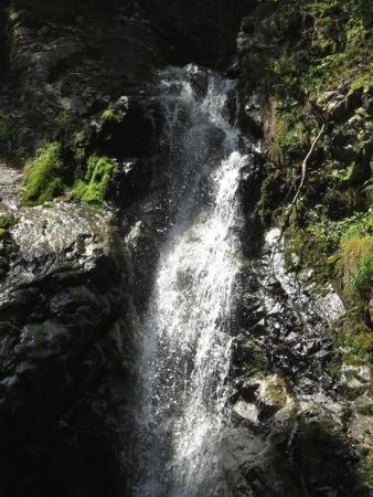 その2不動の滝 079