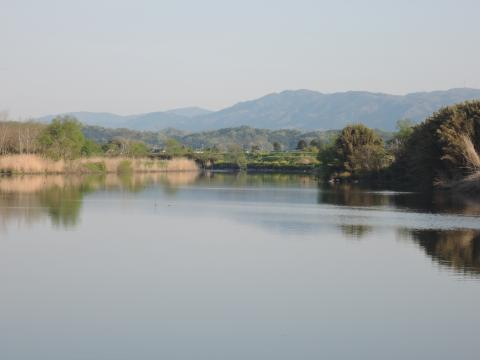 夏井川の風景1