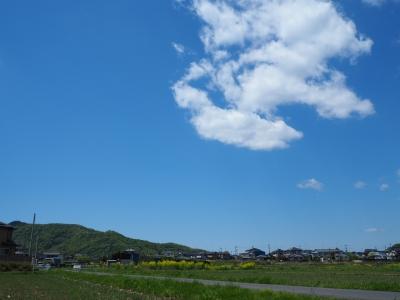 N_studiomimosa栃木の景色