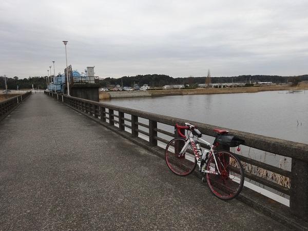 20170218印旛沼 (8)