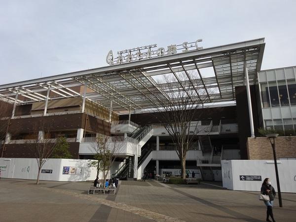 20170301大堀川 (3)