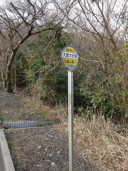 20170325大島② (13)