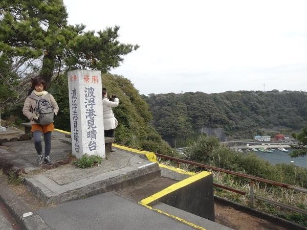 20170325大島③ (11)