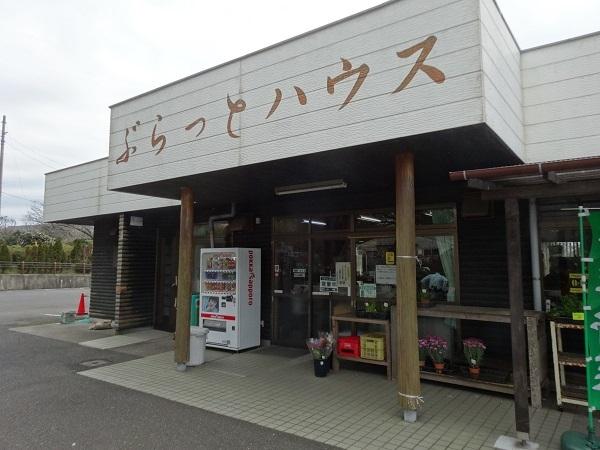 20170325大島④ (7)
