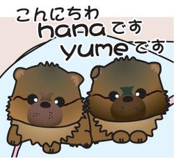 __tn_hanayume_20170415182803833.jpg