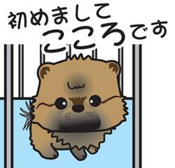 __tn_kokoro_201705022012107b9.jpg