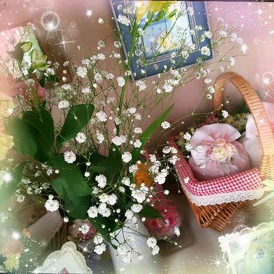 suzu_201702261536248a7.jpg