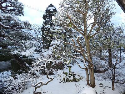 20170308 石川県の雪1