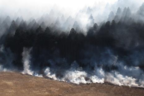 仙石原山焼き