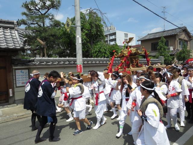 京都 伏見 ミナージュ 金札宮 神輿 祭 (23)