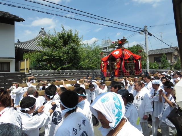 京都 伏見 ミナージュ 金札宮 神輿 祭 (31)