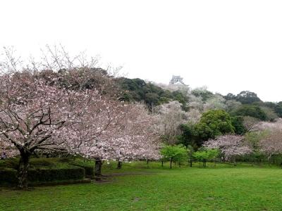館山市 城山公園