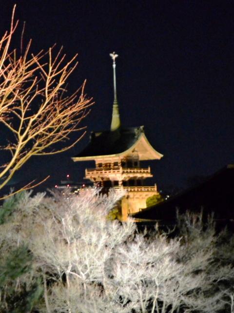 高台寺周辺 (2)