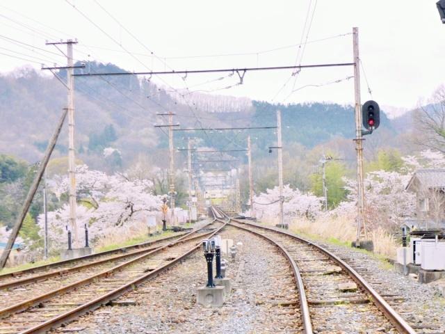 長瀞 (8)