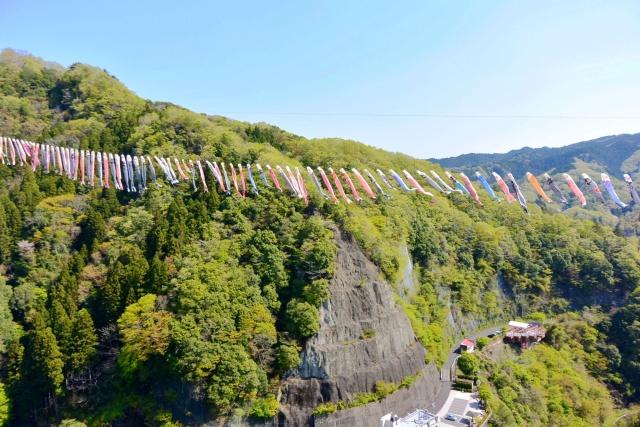 竜神大吊橋 (11)
