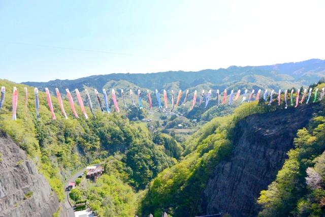 竜神大吊橋 (12)