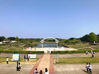 国営ひたち海浜公園 (1)
