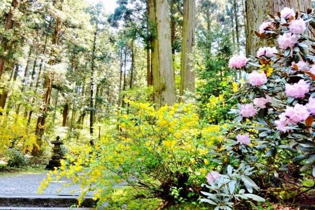 御岩神社 (4)