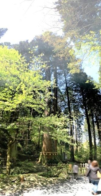 御岩神社 (5)