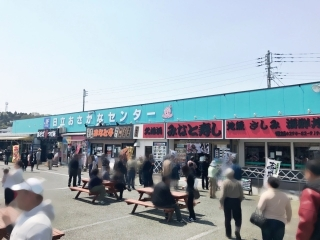 日立おさかなセンター (1)