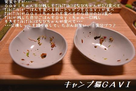 170224_5871.jpg
