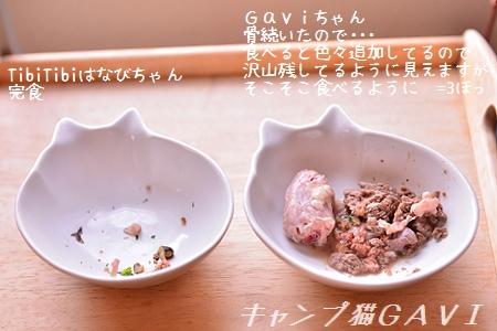 170406_7768.jpg