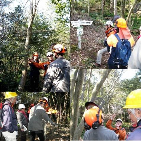 H28安全講習5・森散策