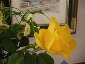 3月14日お花