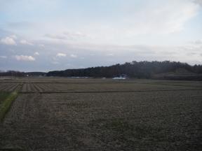 3月19日散歩道の風景1