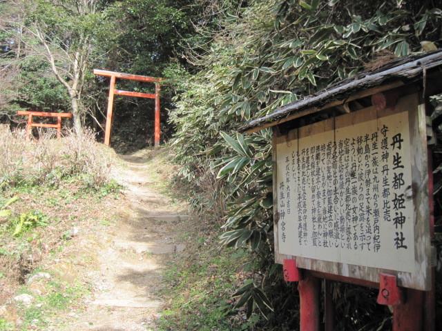 niunohi01