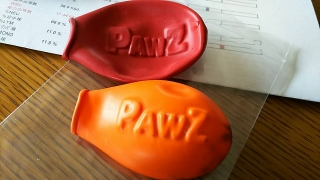 paws8.jpg