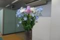 机上の花:2017年3月