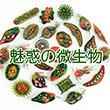 2017_魅惑の微生物_logo