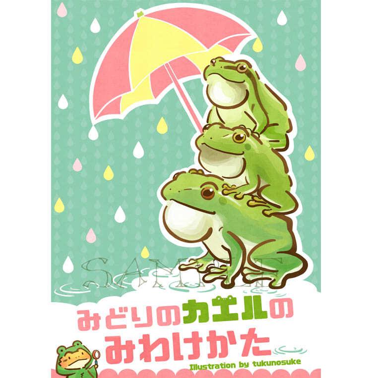 2017_ツクツクぼうし_04