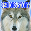2017_SERIORS STORY_logo