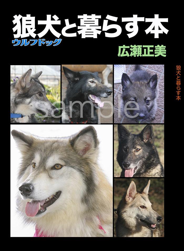 2017_SERIORS STORY_01