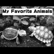 2017_My Favorite Animals_logo