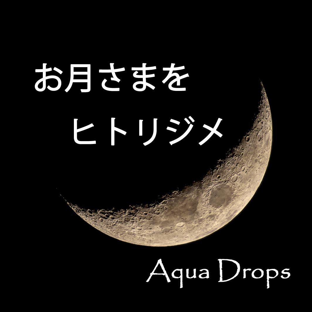 2017_お月さまをヒトリジメ Aqua Drops_logo