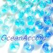 2017_OceanAccord_logo.jpg
