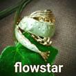 2017_flowstar_logo.jpg