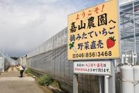 JZX100 チェイサー いちご狩り 神奈川県